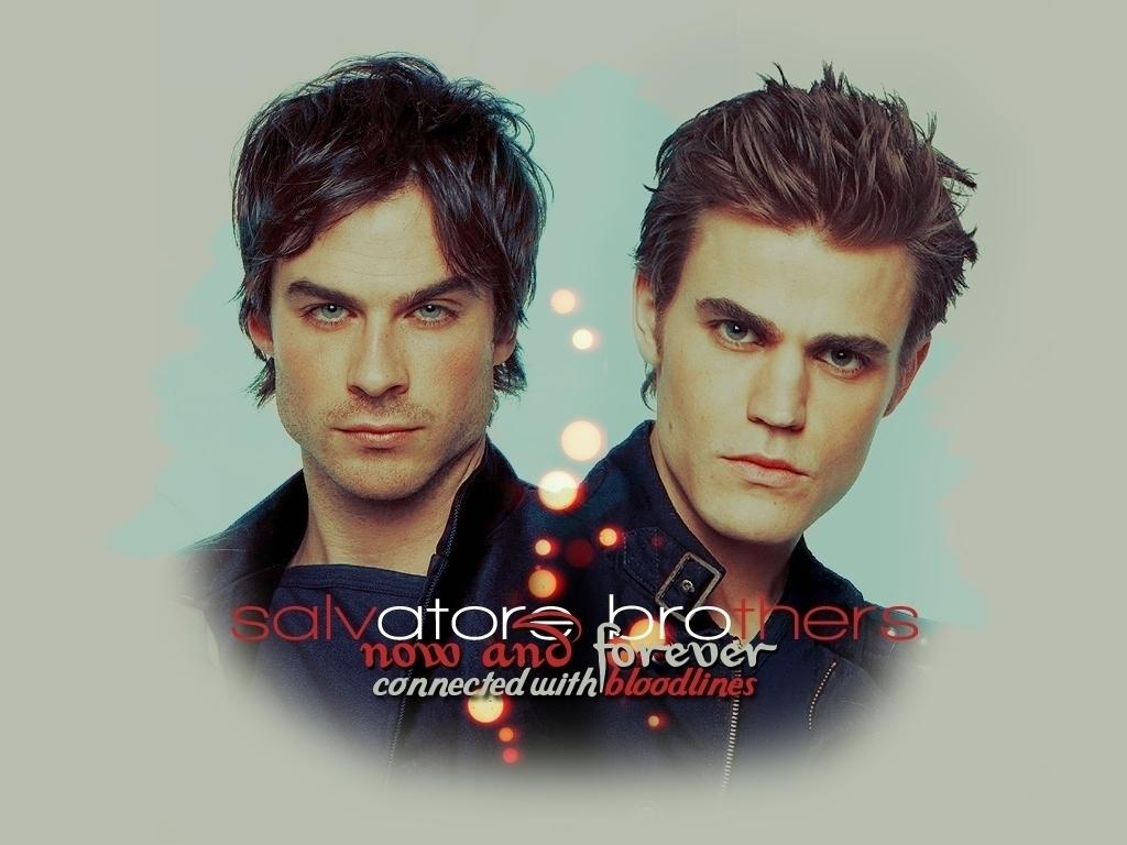 Damon&Stefan - Damon and Stefan Salvatore Wallpaper ...
