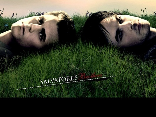 Damon and Stefan Salvatore wolpeyper called Damon&Stefan ✯