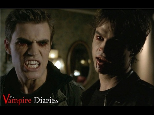Damon and Stefan Salvatore پیپر وال containing a portrait called Damon&Stefan ✯