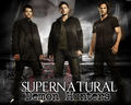 Demon Hunters - supernatural wallpaper