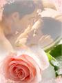 Edward & Bella ♥ - twilight-series photo