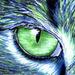 Eye - eyes icon