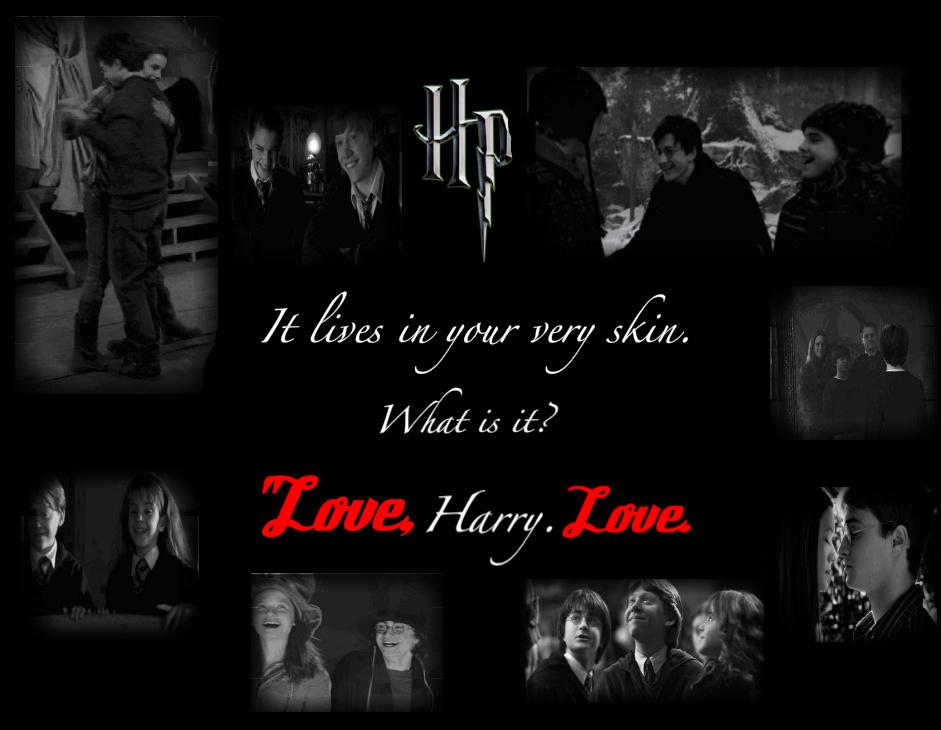 Harry Potter- Love - Harry Potter Photo (20862897) - Fanpop