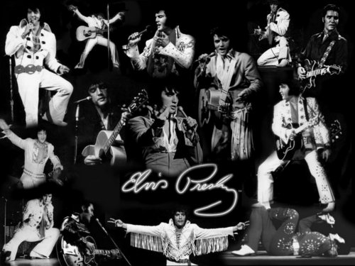elvis presley wallpaper probably with a músico de banda, bandasman, bandsman and a show, concerto titled imagens Of Elvis