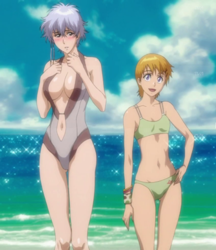 Bleach anime achtergrond containing a maillot and a bikini titled Isane and Kyone