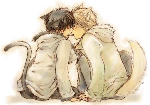 Kitty love :3
