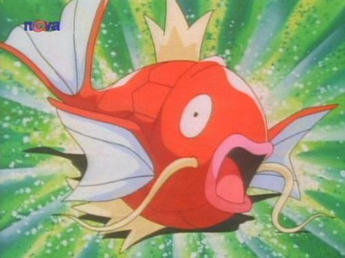 magikarp images Magikarp wallpaper and background photos