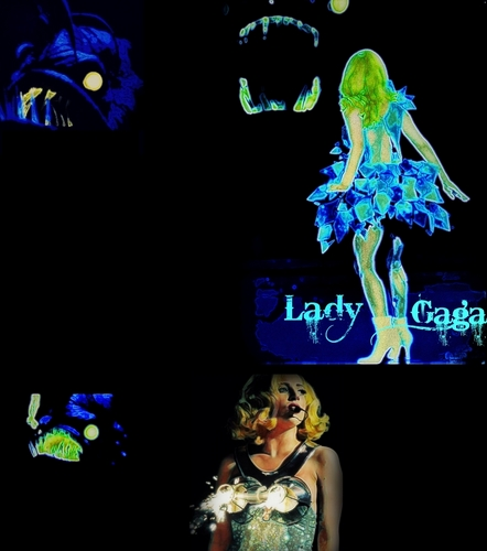 Monster Ball paparazzi