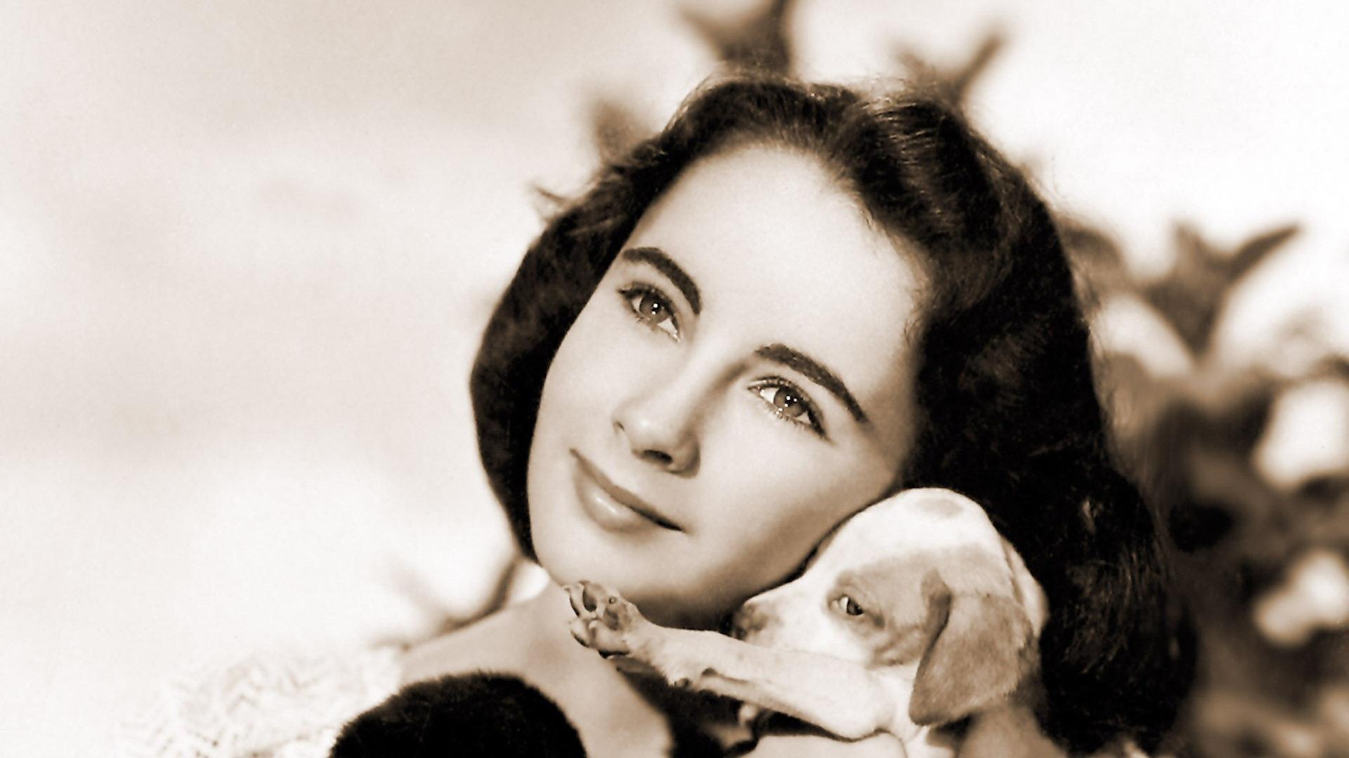 elizabeth taylor images national velvet hd wallpaper and