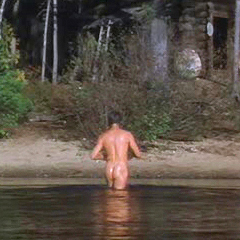 PIERCE BROSNAN NUDE IN GREY OWL.