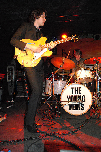 Ryan Ross The young veins