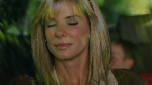 Sandra Bullock wallpaper with a portrait called Sandra Bullock - The Blind Side