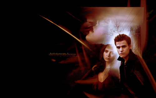 Stefan & Elena fondo de pantalla possibly with a concierto titled Stefan and Elena ❤