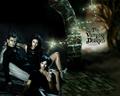 The Vampire Diaires