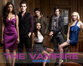 The Vampire Diaries ღ - the-vampire-diaries wallpaper