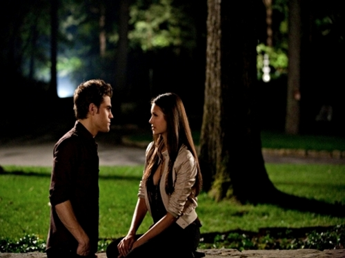 The Vampire Diaries TV Show wallpaper probably containing a beech, a live oak, and a street titled The Vampire Diaries ღ