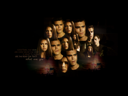 The Vampire Diaries ღ - the-vampire-diaries-tv-show Wallpaper