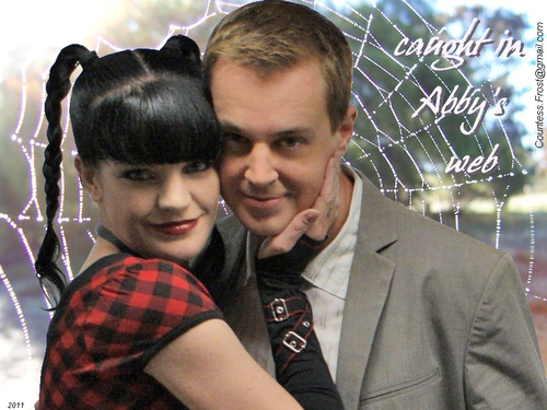 caught in Abby's web - abby-sciuto Wallpaper
