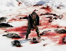 murderd seals