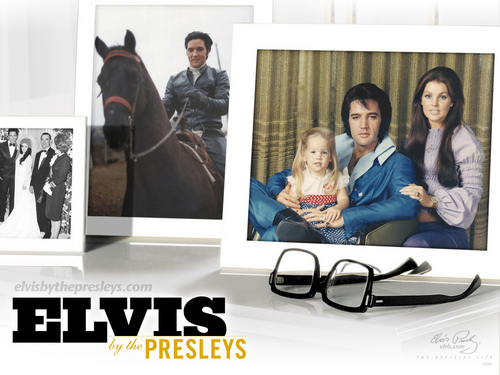 Elvis Presley wallpaper probably containing a sign, a living room, and a family room called presley family