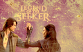 richardandkahlan - legend-of-the-seeker wallpaper