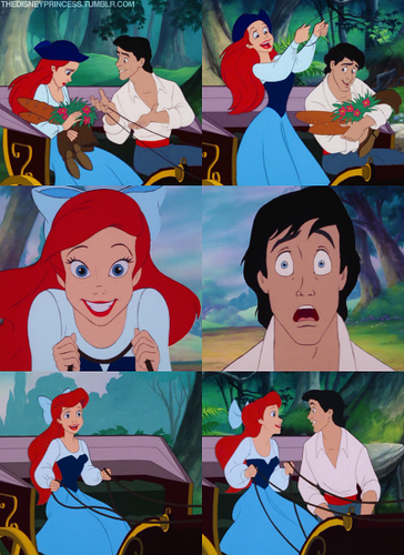 Ariel and Eric's Trip