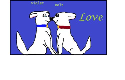 Bolt loves بنفشی, وایلیٹ