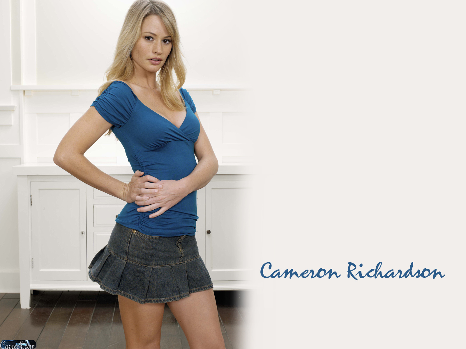 Cameron Richardson Net Worth
