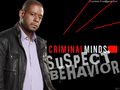Criminal Minds: Suspect Behavior - criminal-minds-suspect-behavior wallpaper