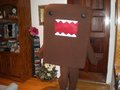 DOMO KUN!! - domo-kun photo