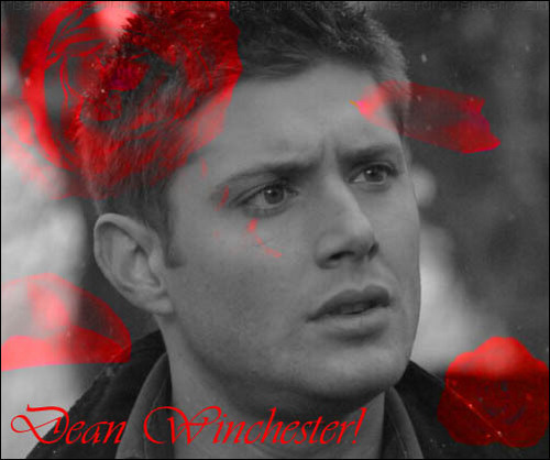 Winchester's Journal wallpaper entitled Dean Winchester
