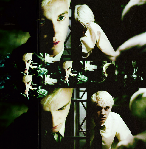Draco fã Art