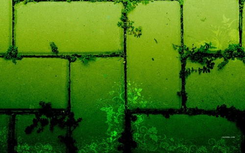 Green Bricks wallpaper