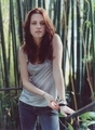 Isabella Swan - twilight-series photo