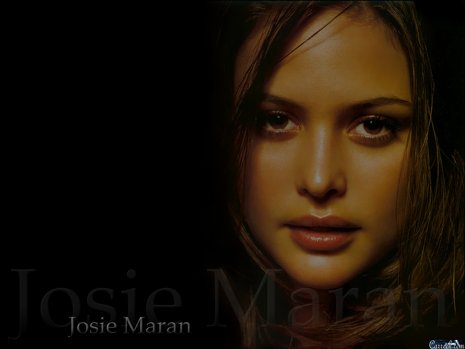 Josie maran marishka josie maran wallpaper 20924947 for Maran house
