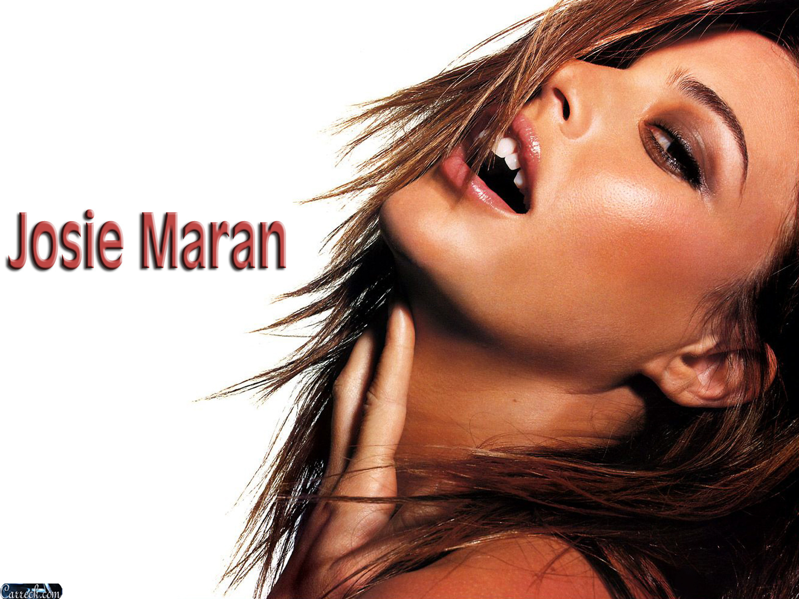 Josie maran marishka josie maran wallpaper 20925724 for Maran house
