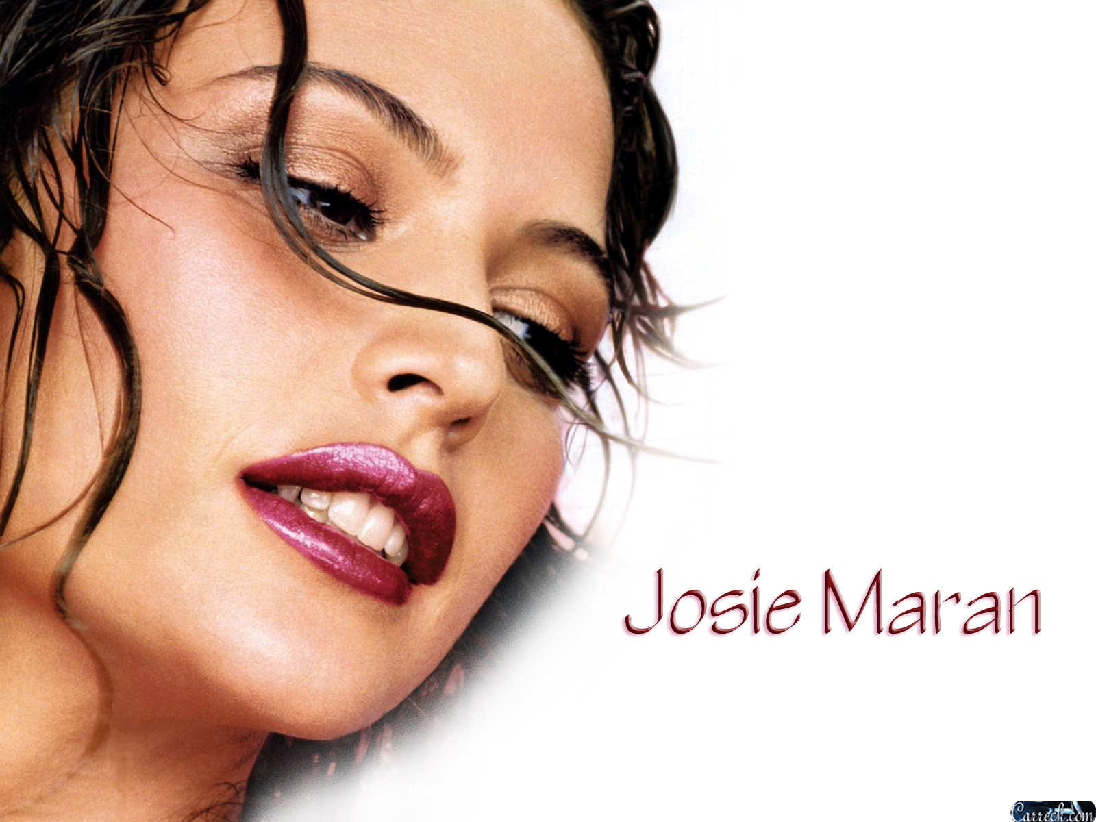 Josie maran marishka josie maran wallpaper 20925806 for Maran house