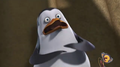 Scared Private :3 - penguins-of-madagascar screencap