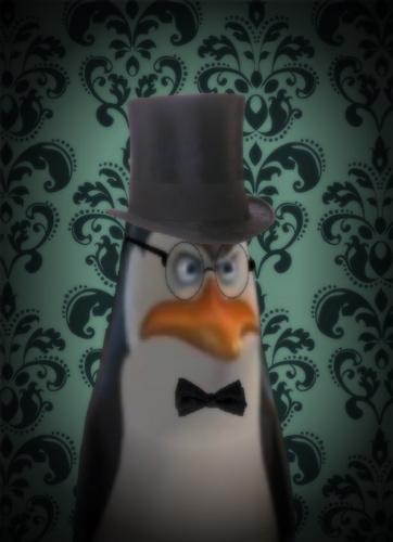 पेंग्विन्स ऑफ मॅडगास्कर वॉलपेपर titled Sir Kowalski