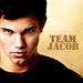 Taylor as Jacob Black - taylor-lautner icon
