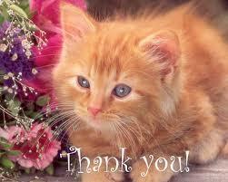 Thank Ты Dear Princess <3