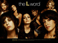 cast - the-l-word photo