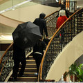 michael+his kids returning to the hotel,queen_gina - michael-jackson photo