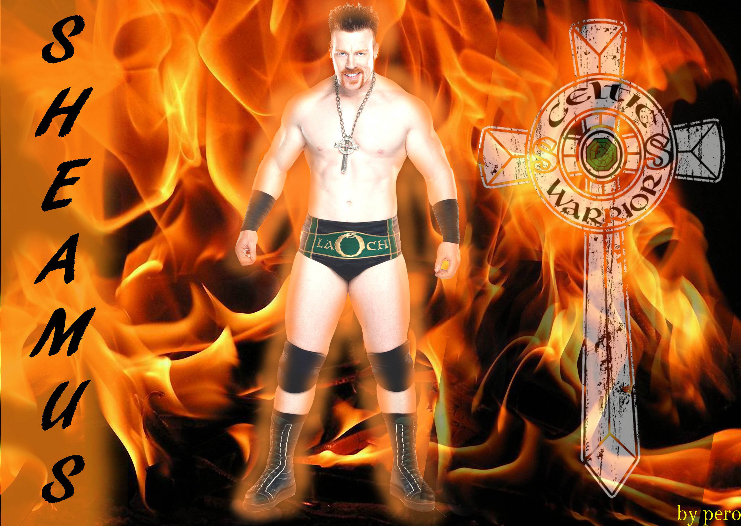http://images4.fanpop.com/image/photos/20900000/sheamus-exclusive-fanpop-sheamus-20984353-2560-1817.jpg