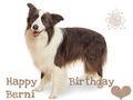❤ HAPPY BIRTHDAY SWEET BERNI ❤