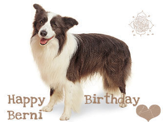❤ HAPPY BIRTHDAY SWEET BERNI ❤