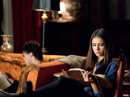 Katherine Pierce and Elena Gilbert wallpaper containing a brasserie, a drawing room, and a boardroom titled 2x16 The House Guest