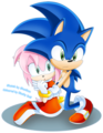 CB:SonAmy 2 - amy-rose fan art