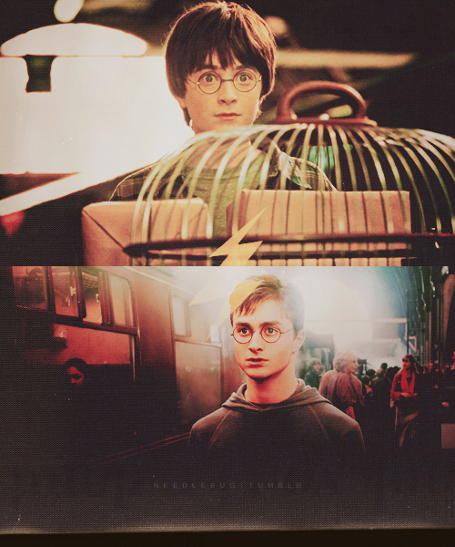 Harry Potter fan art adulto