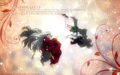 Inuyasha and Kagome - inuyasha-the-final-act wallpaper